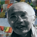Best of the Four Dharmas DVD